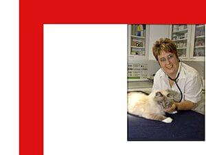 Bild zum Artikel: Familiär und kompetent: Kleintierpraxis – Ottobrunn Dr. med. vet. Katharina Mejstrik