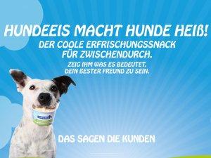 Bild zum Artikel: Hundeeis macht Hunde heiß: Frozen Joghurt für Hunde von Cold & Dog