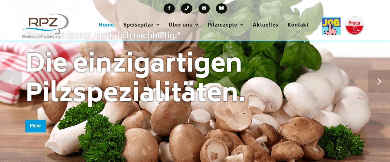 Image of Polnische Saisonarbeiter (w/m/d) gesucht: Rheinische Pilz-Zentrale GmbH in Geldern, Deutschland
